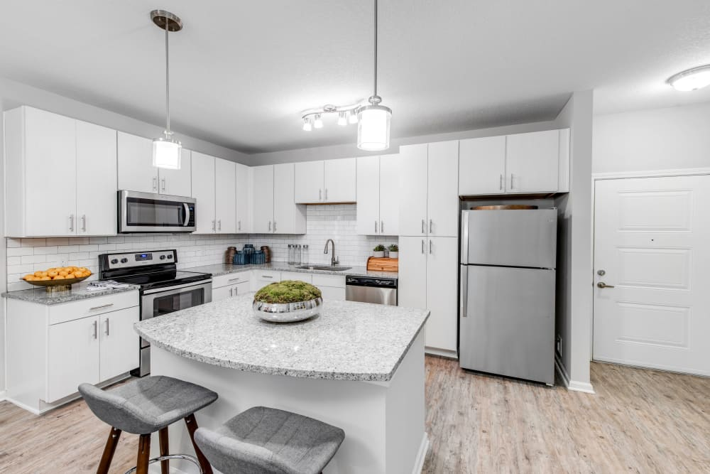 Stainless-steel appliances and granite countertops in a model home at Canopy at Citrus Park in Tampa, Florida
