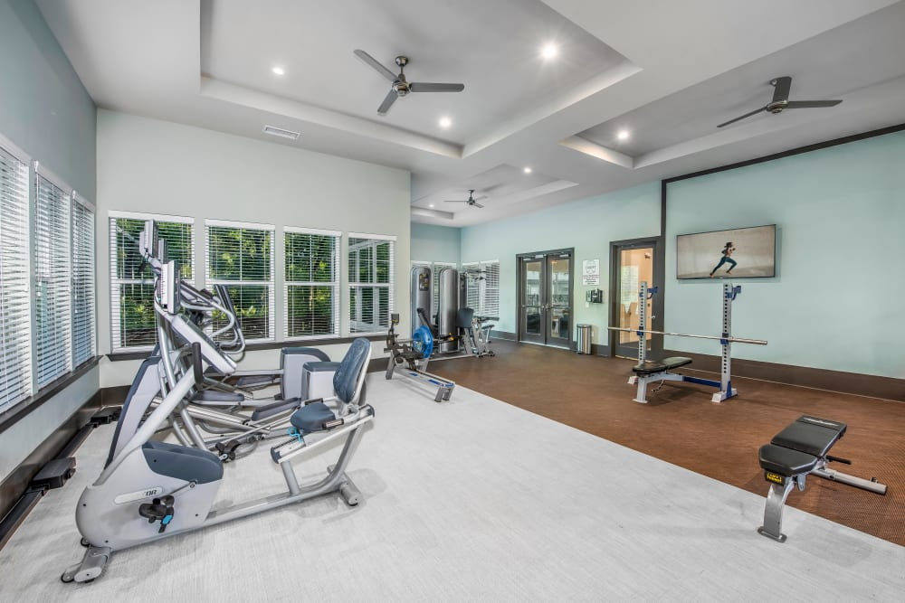 Spacious fitness center with ample equipment at Canopy at Citrus Park in Tampa, Florida