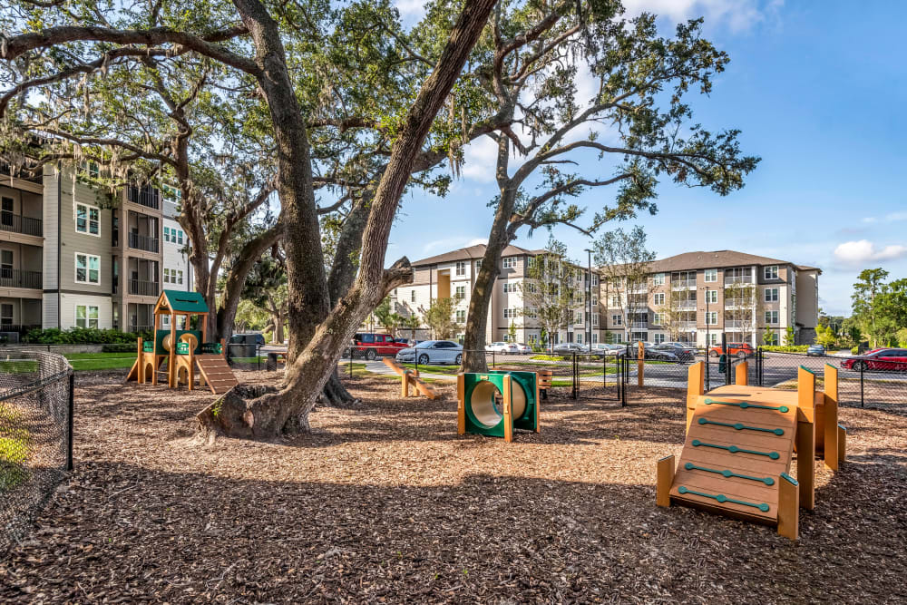 Onsite bark park for your dogs at Canopy at Citrus Park in Tampa, Florida