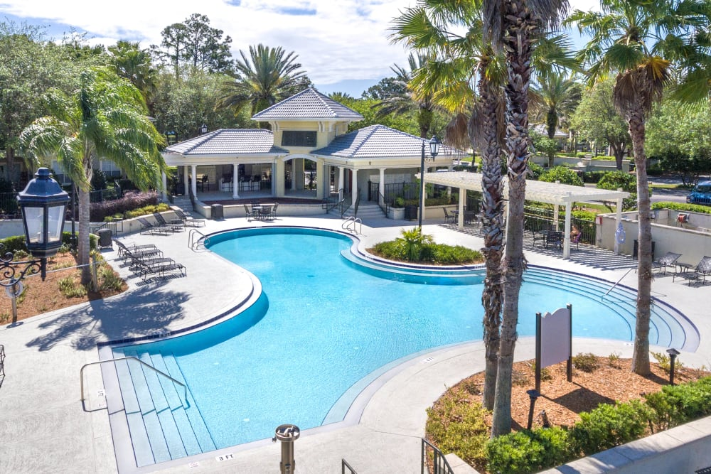 Resort-style swimming pool flanked by palm trees at Cape House in Jacksonville, Florida