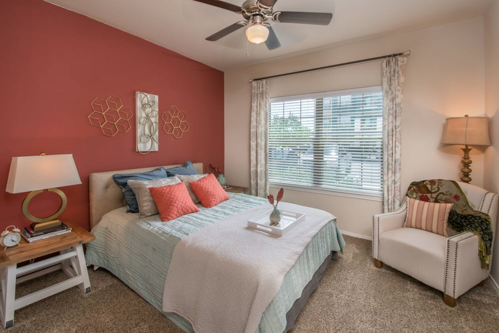Accent wall and a ceiling fan in the master bedroom of a model apartment home at Carrington Oaks in Buda, Texas