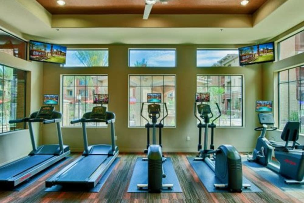 Plenty of cardio equipment in the onsite fitness center at Elevation Chandler in Chandler, Arizona