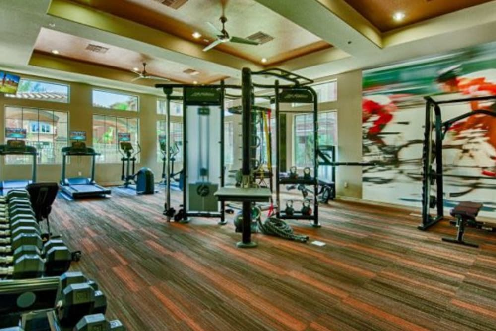Expansive fitness center at Elevation Chandler in Chandler, Arizona