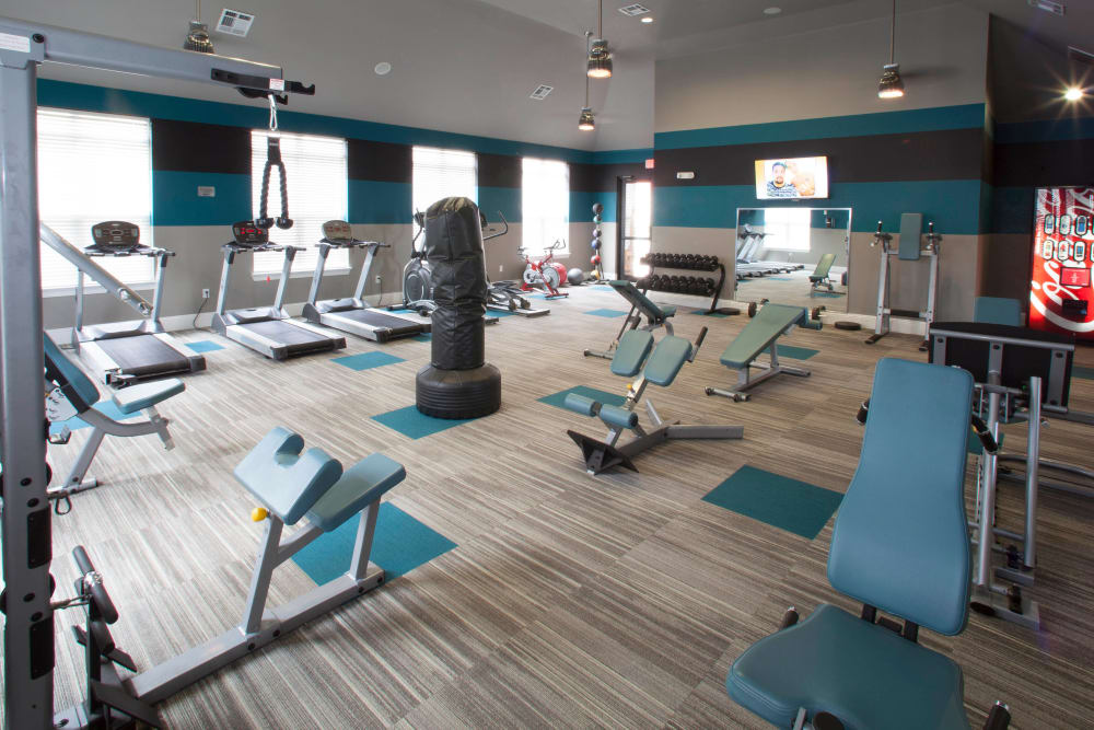 Fitness center with ample equipment at Olympus Katy Ranch in Katy, Texas
