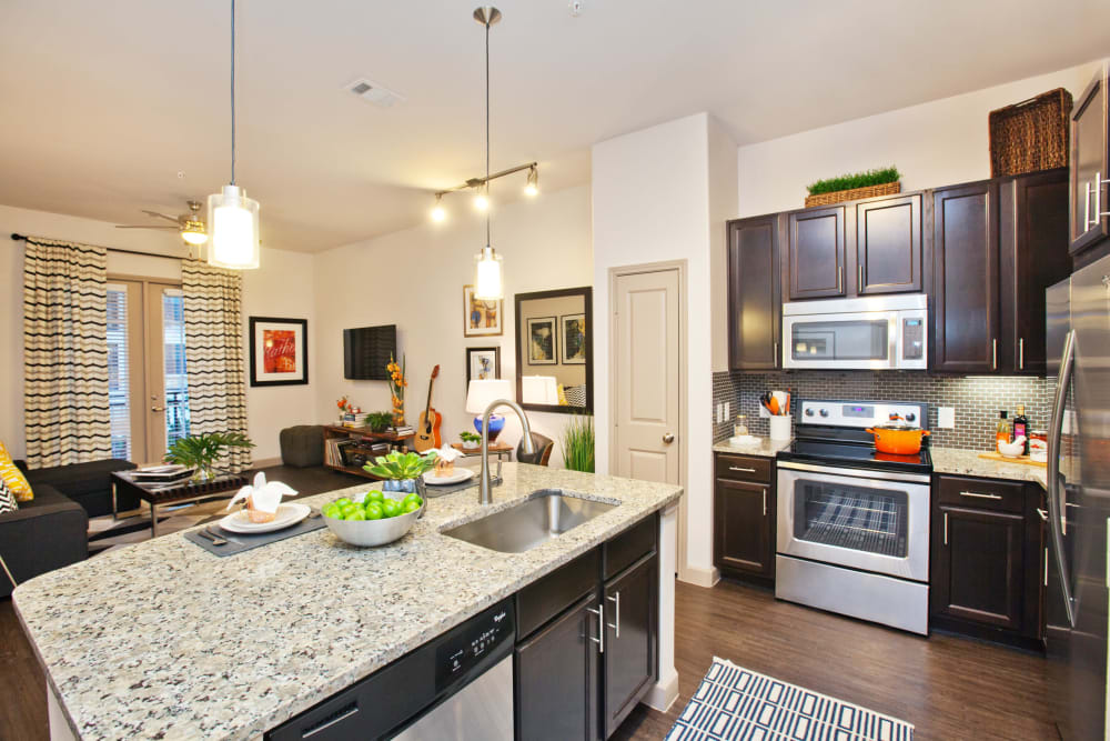 Elegant and gourmet kitchen area at Olympus Auburn Lakes in Spring, Texas