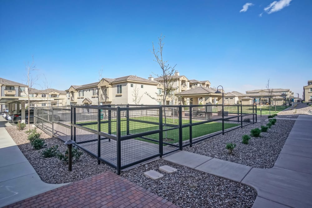 Onsite bark park at Olympus Northpoint in Albuquerque, New Mexico