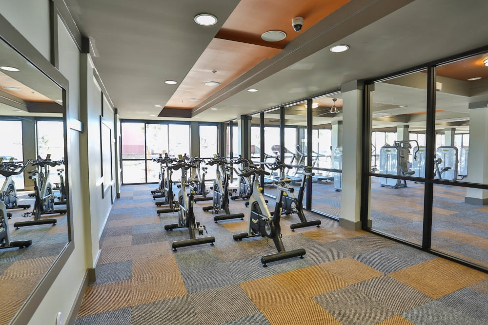 Spin bikes in the fitness center at Olympus Steelyard in Chandler, Arizona