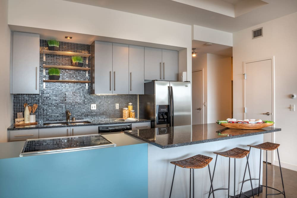Gourmet kitchen with stainless-steel appliances at Mosaic Dallas in Dallas, Texas