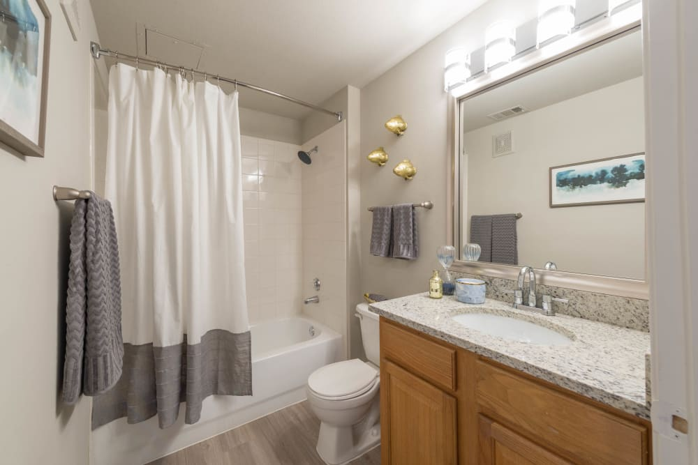 Large vanity mirror and a granite countertop in a model apartment's bathroom at Olympus Stone Glen in Keller, Texas