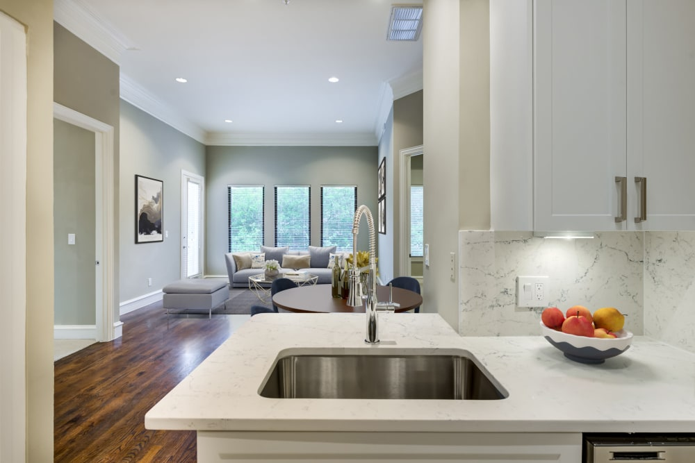 Kitchen with modern appliances at Rienzi at Turtle Creek Apartments