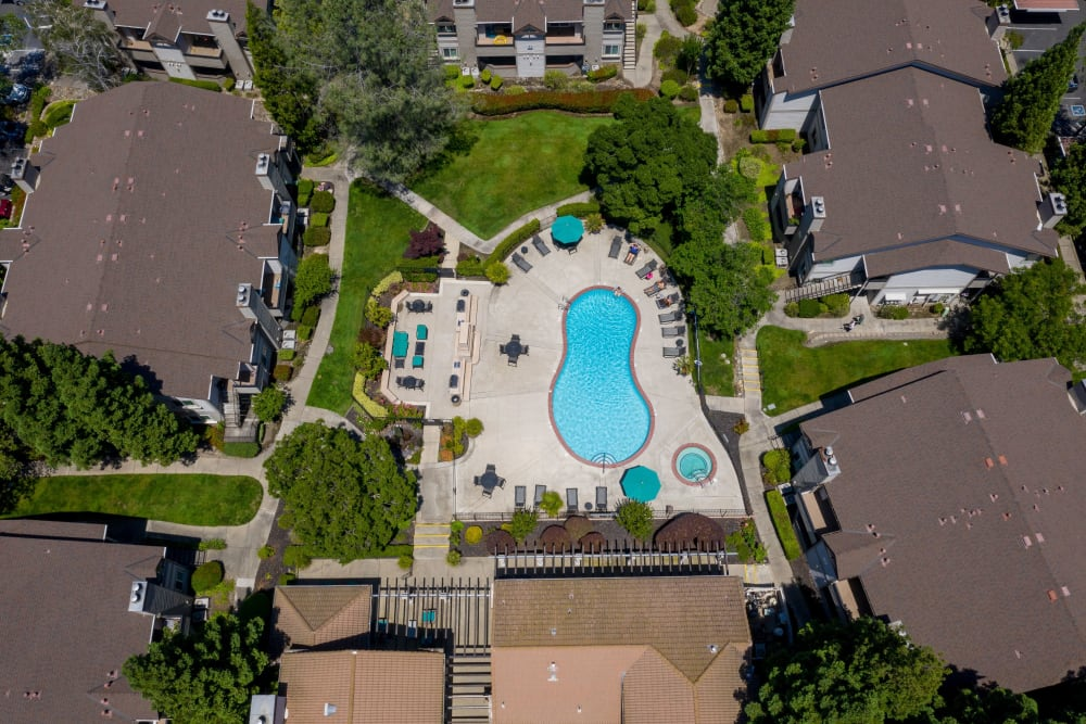 Ariel view of the swimming pool and hot tub at Shaliko in Rocklin, California