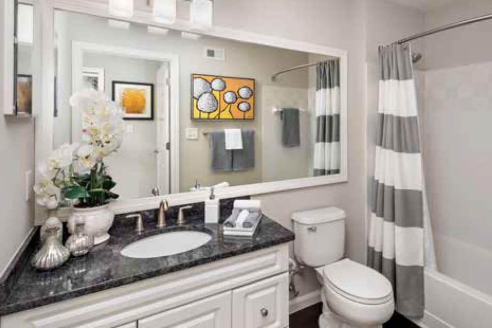 A decorated apartment bathroom at Ellington Metro West in Westborough, Massachusetts