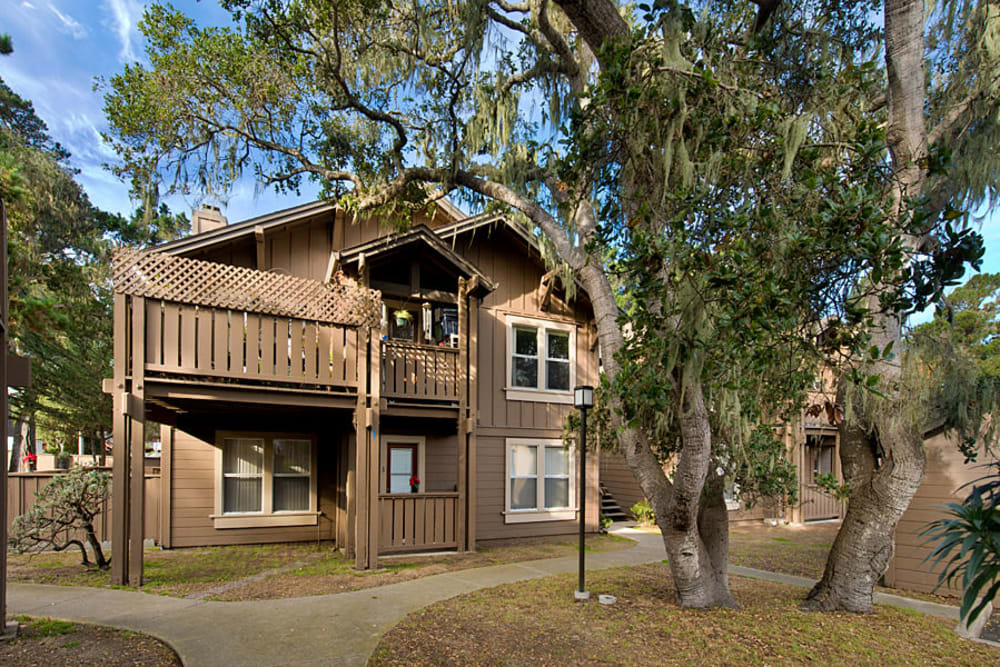 Beautiful Mediterranean vegetation at Seventeen Mile Drive Village Apartment Homes in Pacific Grove, California