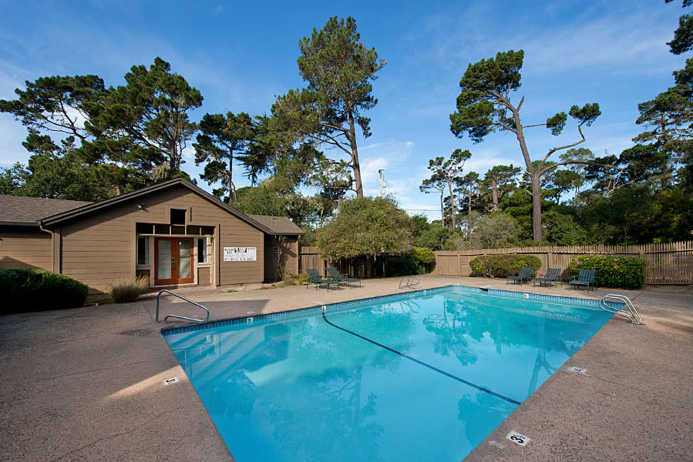 Swimming pool with a sundeck surrounded by lush vegetation at Seventeen Mile Drive Village Apartment Homes in Pacific Grove, California