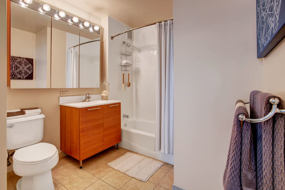 A decorated apartment bathroom at Skyline New Rochelle in New Rochelle, New York