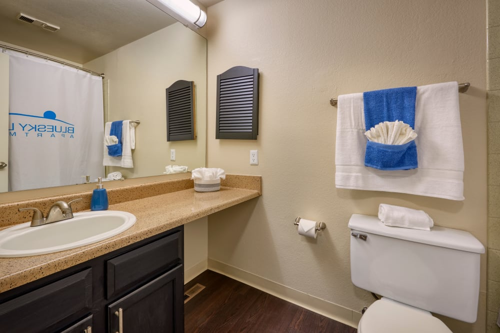 Recently renovated bathroom with brown cabinets and a large tub at Bluesky Landing Apartments in Lakewood, Colorado