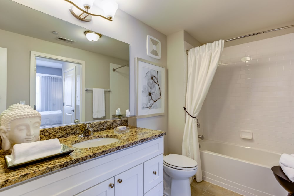 Spacious bathroom with a large vanity mirror at The Oaks Of Vernon Hills in Vernon Hills, Illinois