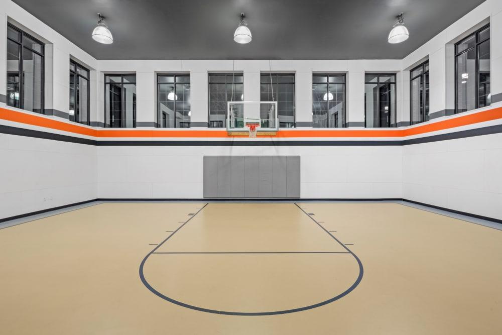 Basketball court at Bradlee Danvers in Danvers, Massachusetts