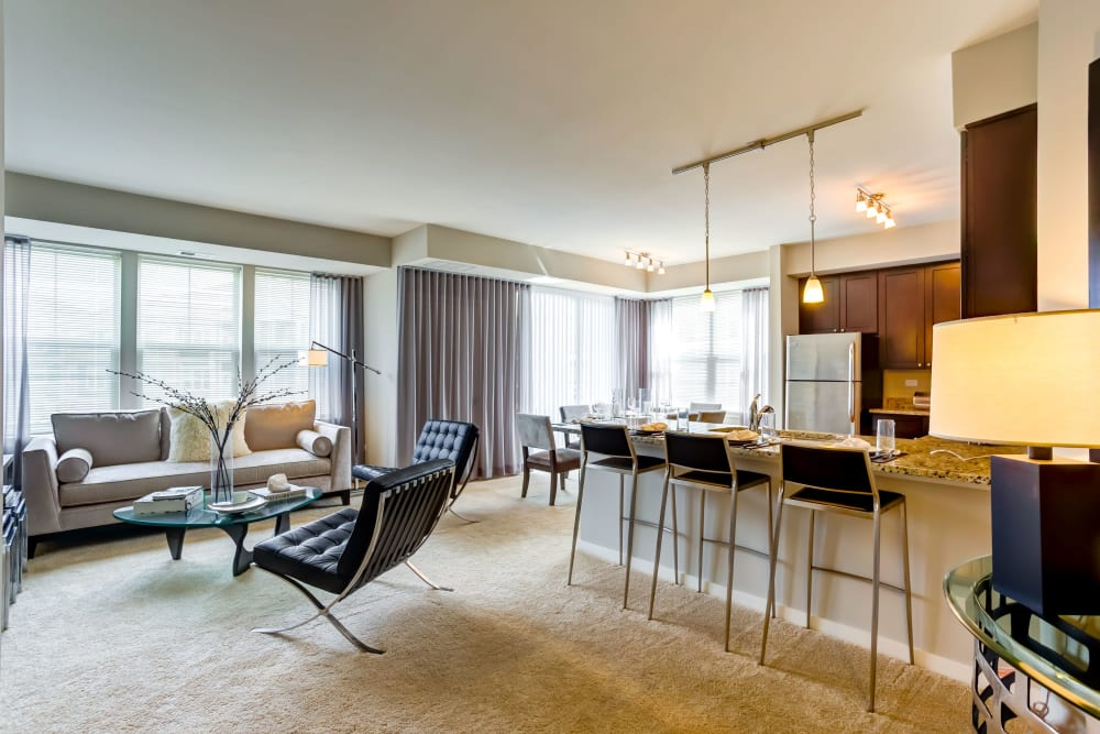 Open-concept floor plan with plush carpeting at The Oaks Of Vernon Hills in Vernon Hills, Illinois