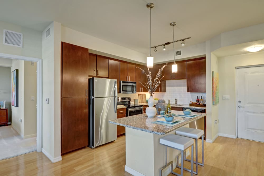 Artistic kitchens at Linden Pointe in Pompano Beach, Florida