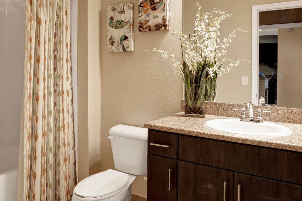 A decorated apartment bathroom at City Center on 7th Apartment Homes in Pembroke Pines, Florida