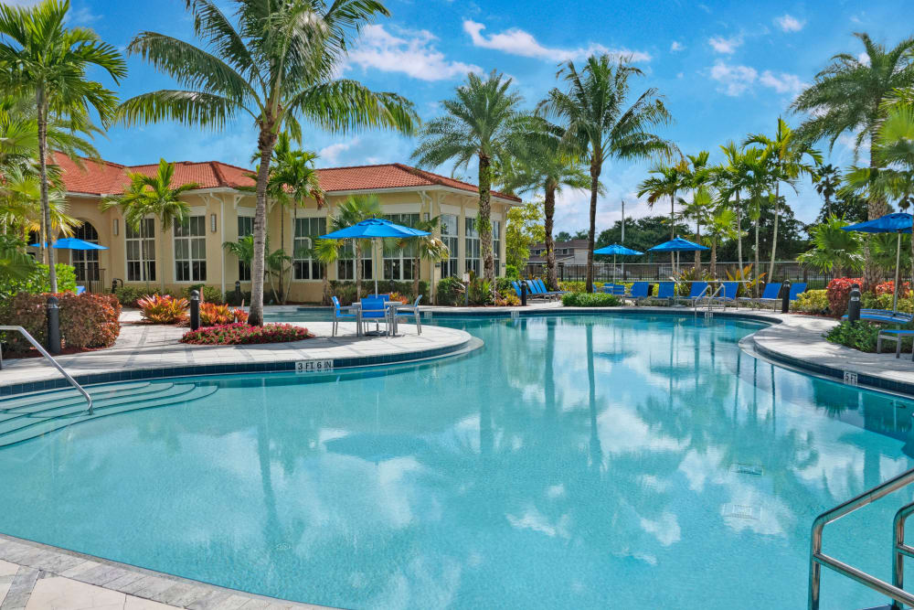 The luxurious community pool at City Center on 7th Apartment Homes in Pembroke Pines, Florida