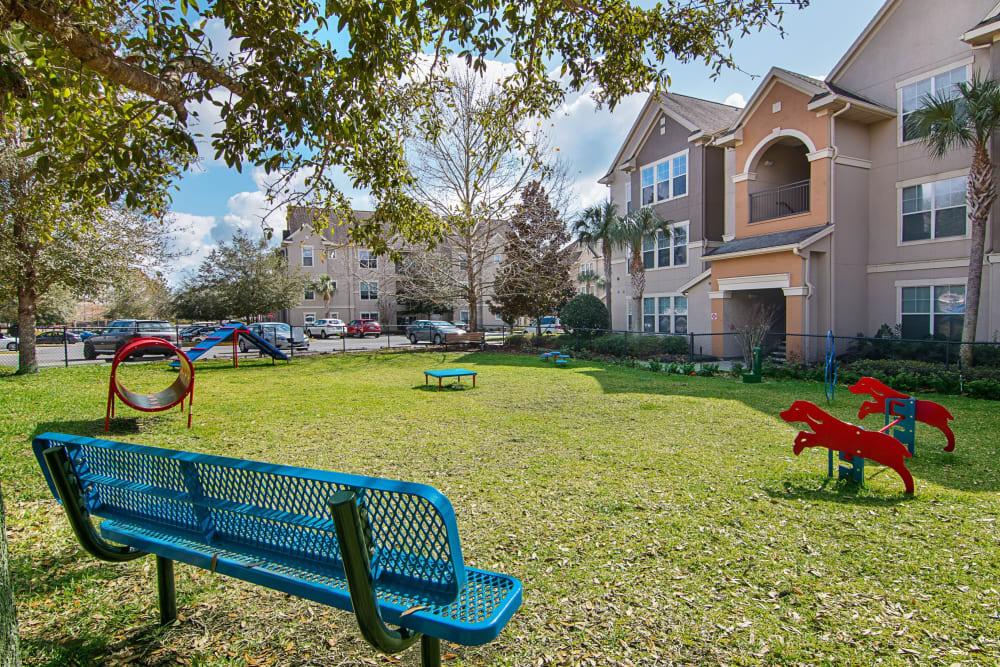 Dog park at Landings at Four Corners in Davenport, Florida