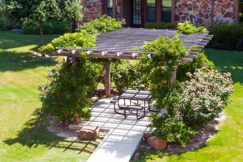 Ivy-covered pergola providing shade to a picnic area at Olympus Team Ranch in Benbrook, Texas
