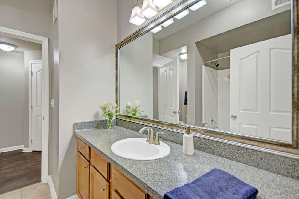Bathroom at Vista 121 Apartment Homes in Lewisville, Texas