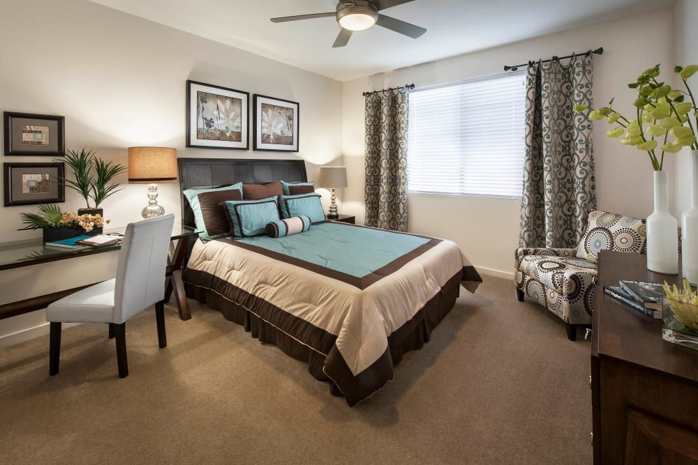 Master bedroom with plush carpeting and a ceiling fan in a model home at Redstone at SanTan Village in Gilbert, Arizona