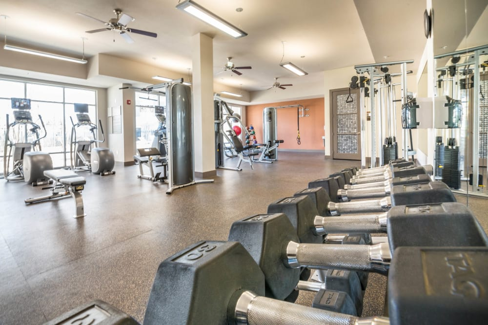 Free weights and more in the fitness center at Union At Carrollton Square in Carrollton, Texas