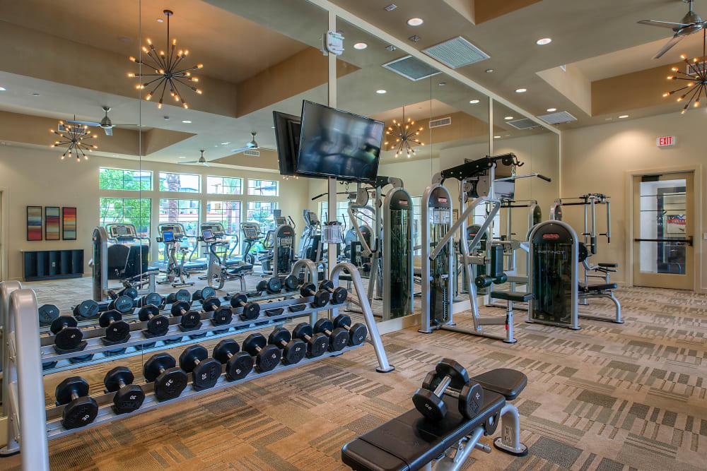 Very well-equipped onsite fitness center at Vistara at SanTan Village in Gilbert, Arizona