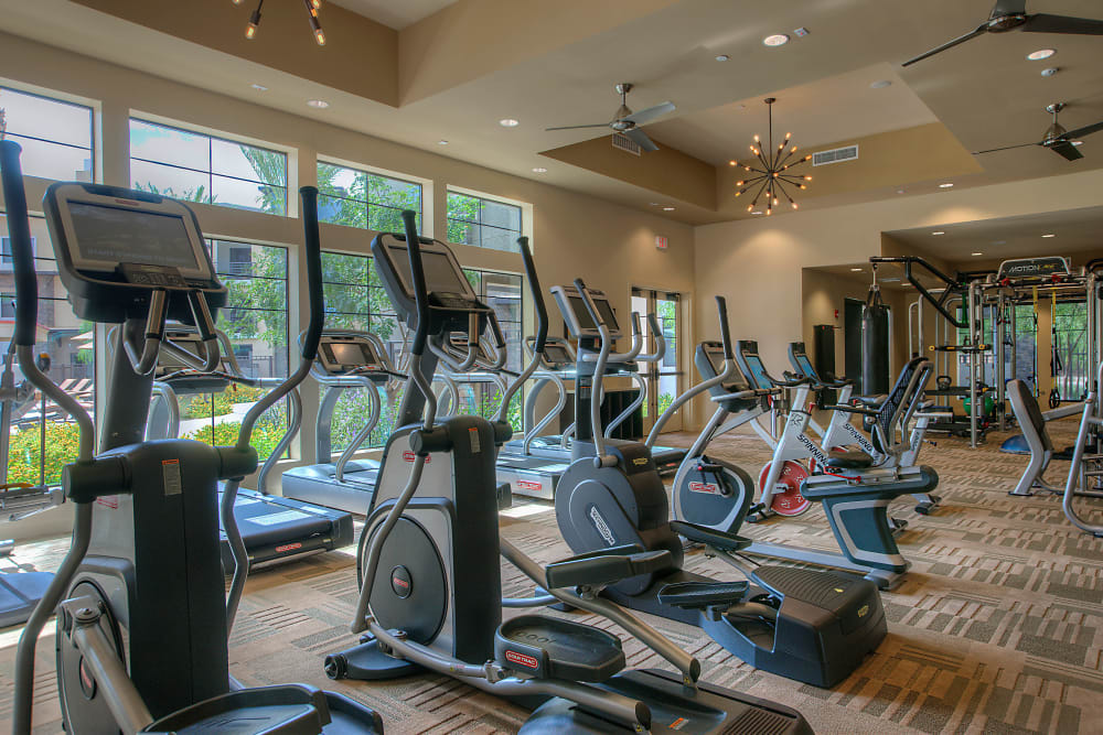 Well-equipped fitness center at Vistara at SanTan Village in Gilbert, Arizona