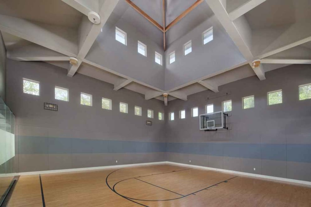 Indoor basketball court at Wimberly at Deerwood in Jacksonville, Florida