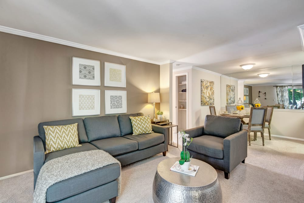 Our Unique Apartments in Germantown, Maryland showcase a Living Room