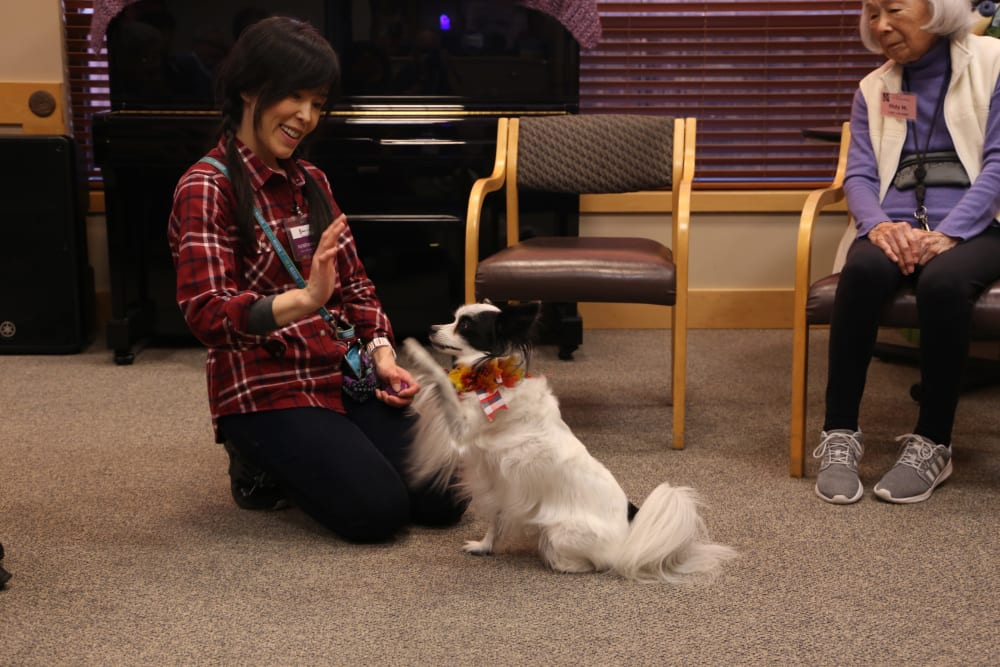 A resident with her dog at Nikkei Manor in Seattle, Washington