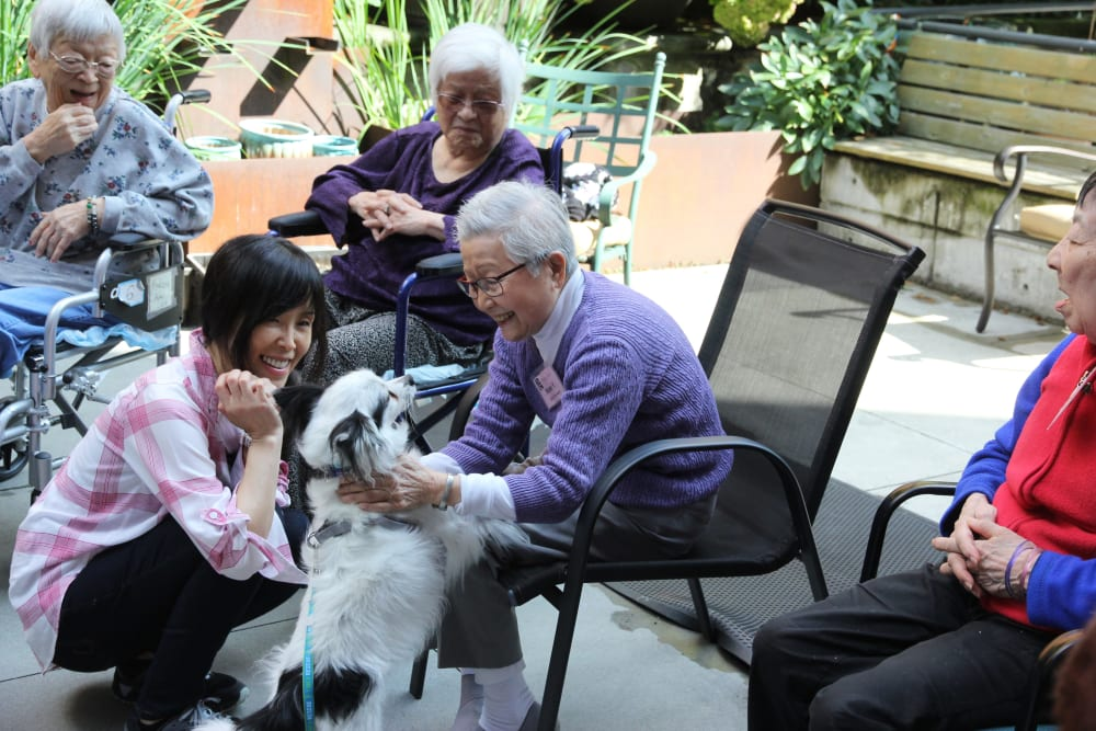 Residents sitting outside playing with a dog at Nikkei Manor in Seattle, Washington