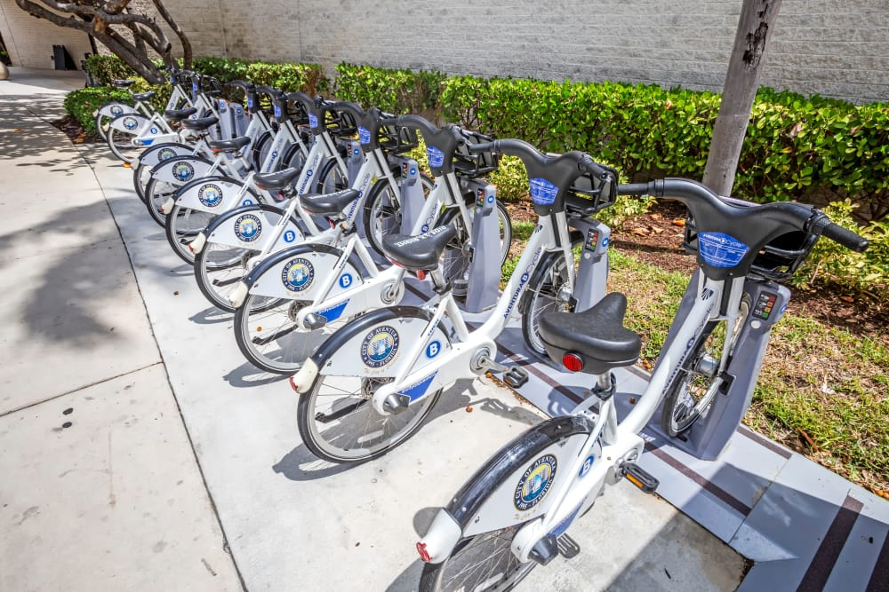 Bikes for resident use at Aliro in North Miami Beach, Florida