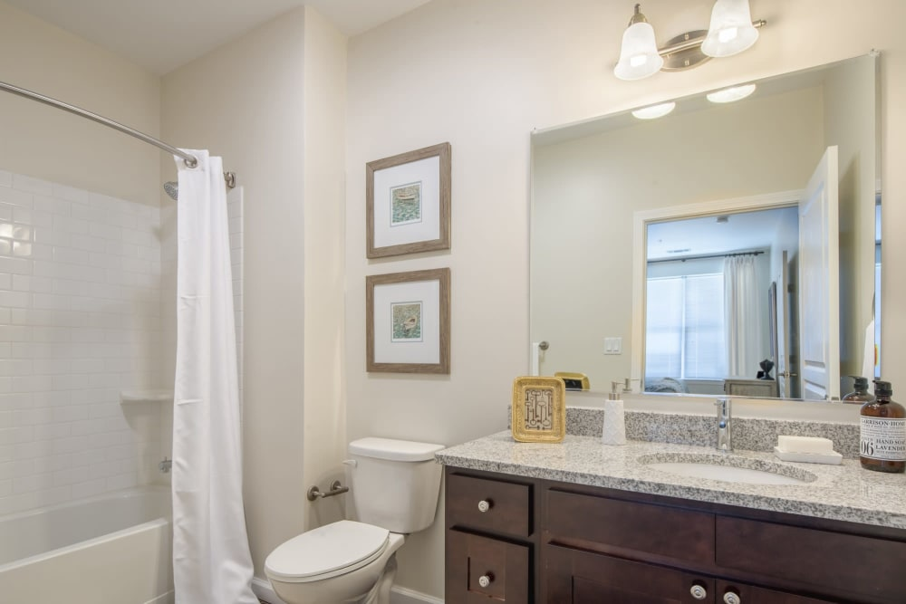 Bathroom at The Royal Belmont in Belmont, Massachusetts