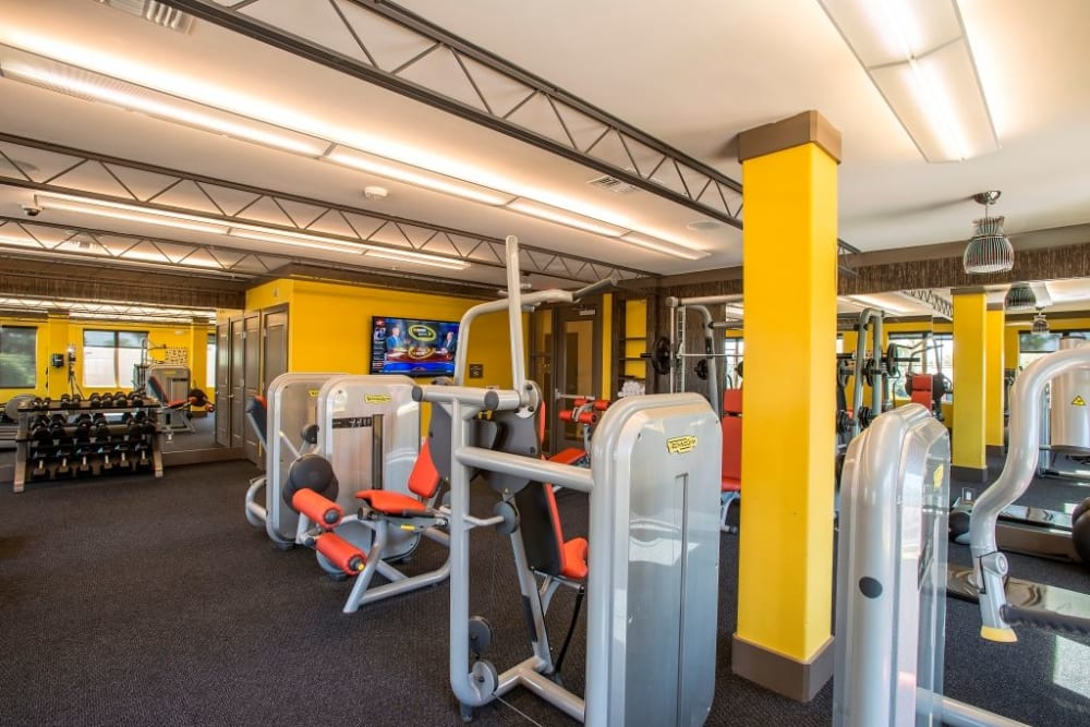 Fully equipped fitness center at Luxe Scottsdale Apartments in Scottsdale, Arizona