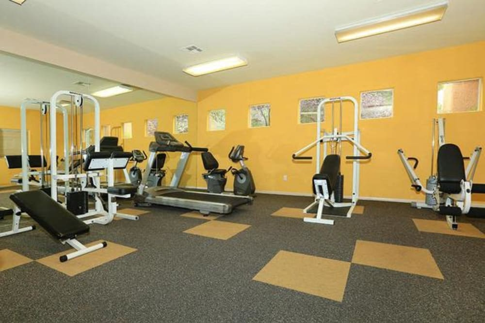 Well-equipped fitness center at Alterra Apartments in Las Vegas, Nevada