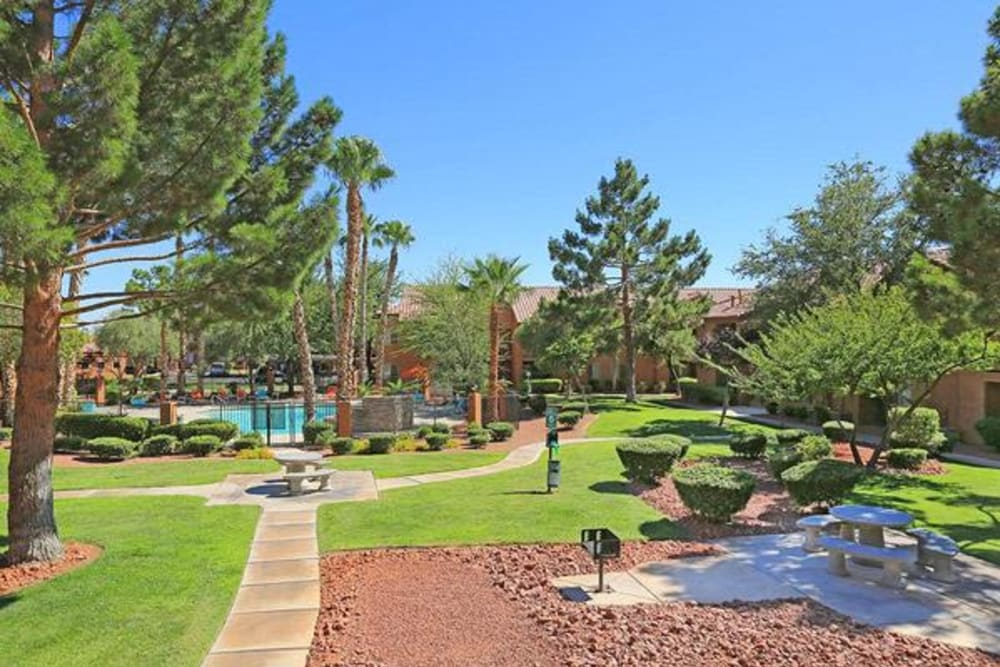 Well-manicured landscaping throughout Alterra Apartments in Las Vegas, Nevada