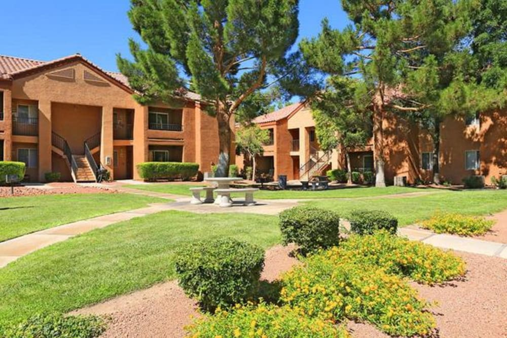 Professionally maintained landscaping throughout the community at Alterra Apartments in Las Vegas, Nevada