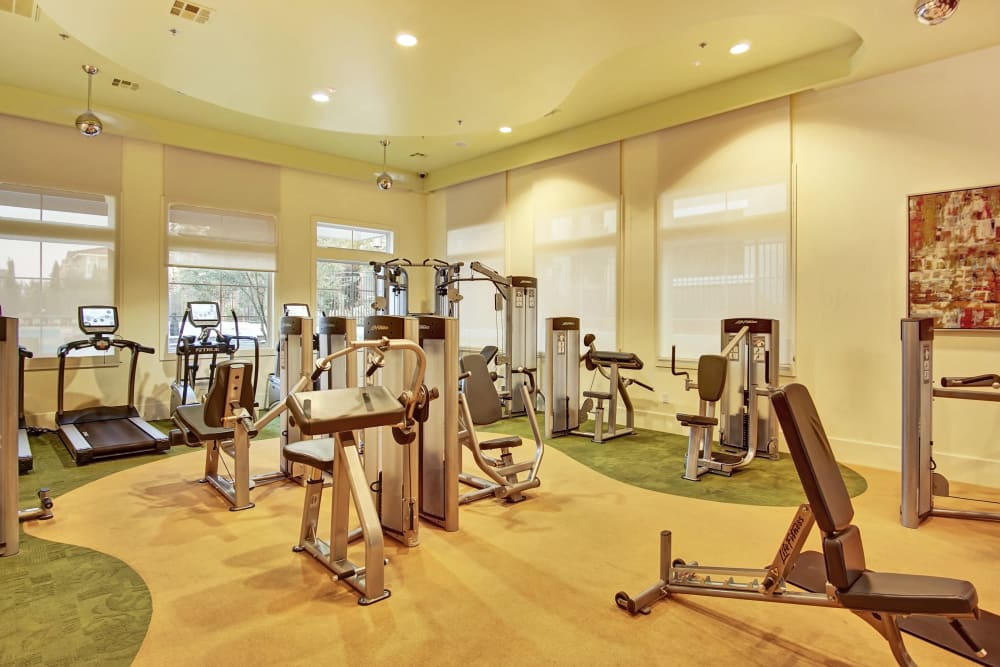 Our Apartments in Henderson, Nevada offer a Fitness Center