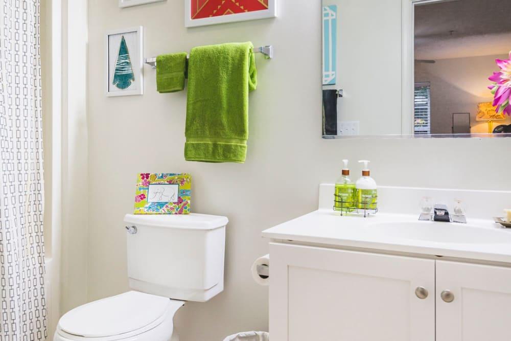 Spacious bathroom at Sunchase at James Madison in Harrisonburg, Virginia