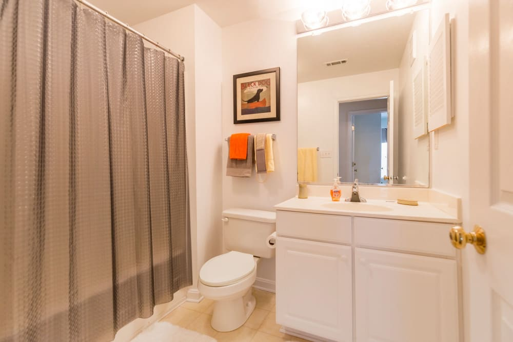 Model bathroom and shower at Sunchase at Longwood in Farmville, Virginia
