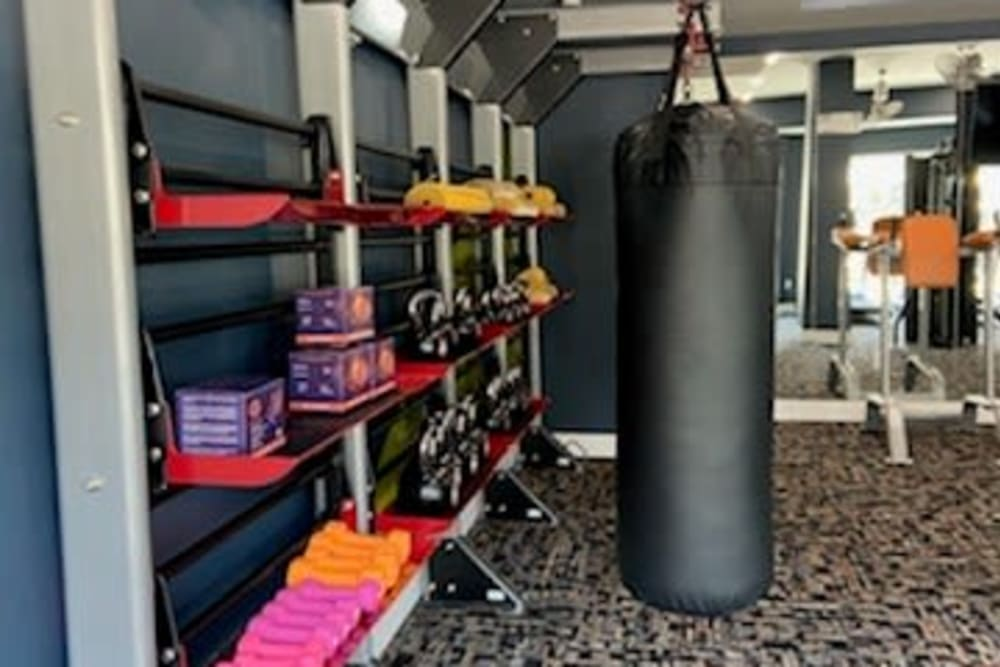The Abbey at Sonterra in San Antonio, Texas offers free weights and other equipment