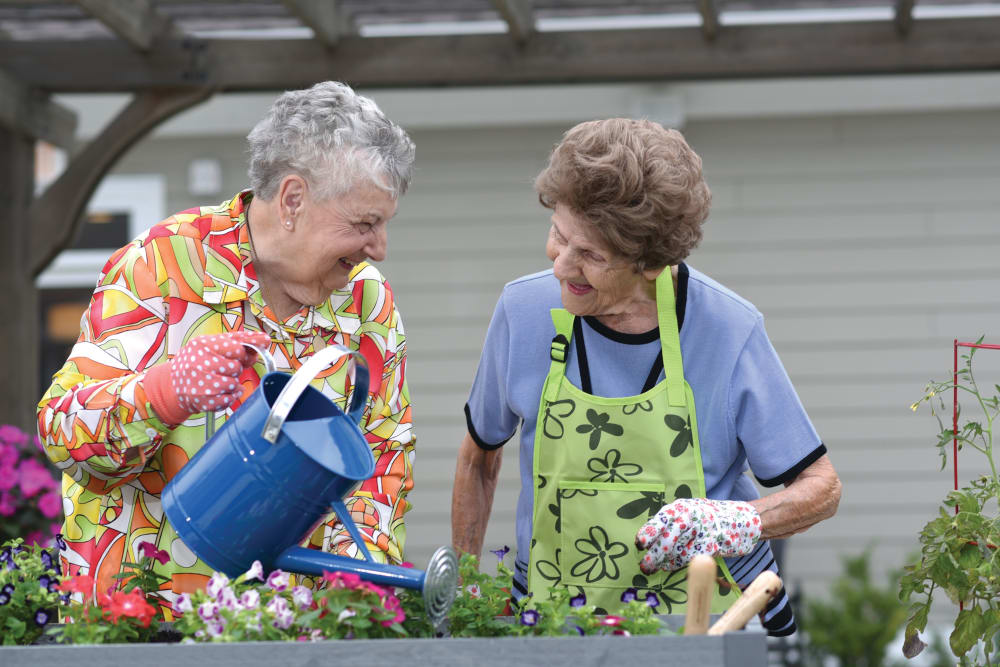 Senior ladies gardening