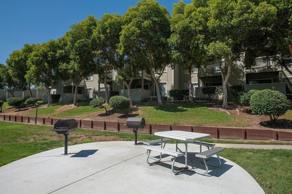 Picnic area surrounded by grass at Sandpiper Village Apartment Homes in Vacaville, California