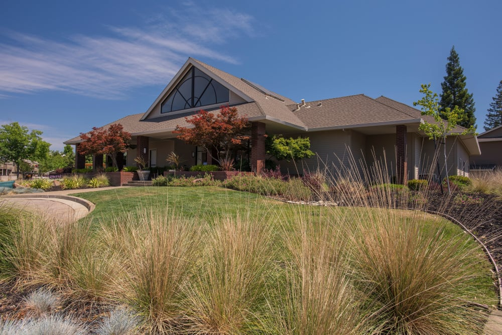 Landscaping outside of the leasing office on a sunny day at Deer Valley Apartment Homes in Roseville, California